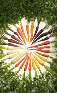 Carrotecolors