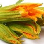 Torta salata ai fiori di zucca