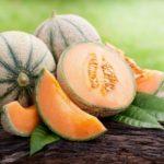 Gazpacho di melone