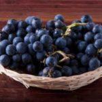 Focaccia con l'uva fragola